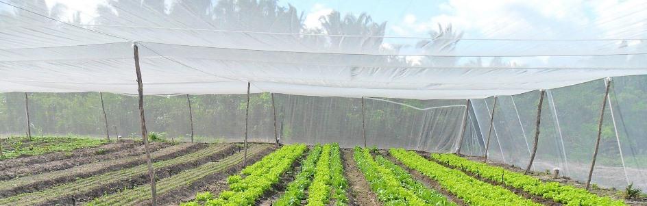 Redes sombra e telas de sol eucligomes produtos para - Telas para sombra ...